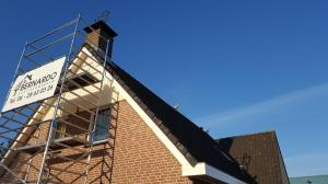 Nijlgansen op het dak